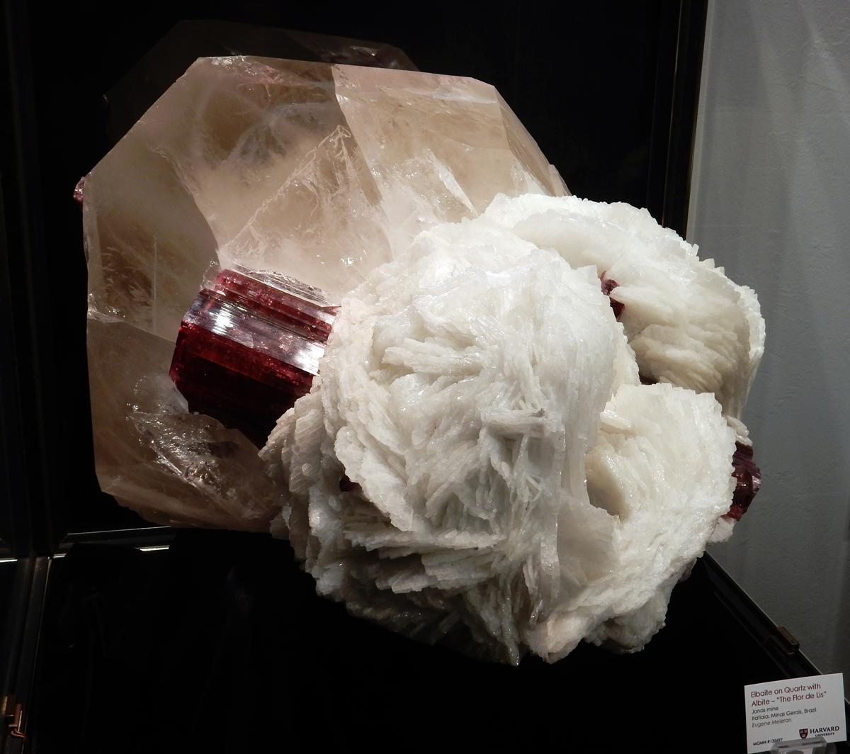 """Figure 6. """"The Flor de Lis"""" -  elbaite (watermelon tourmaline) with quartz and albite."""