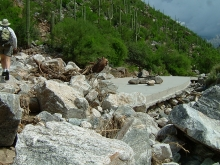 debris flow, Sabino Canyon, Santa Catalina Mountains, Coronado National Forest, Arizona