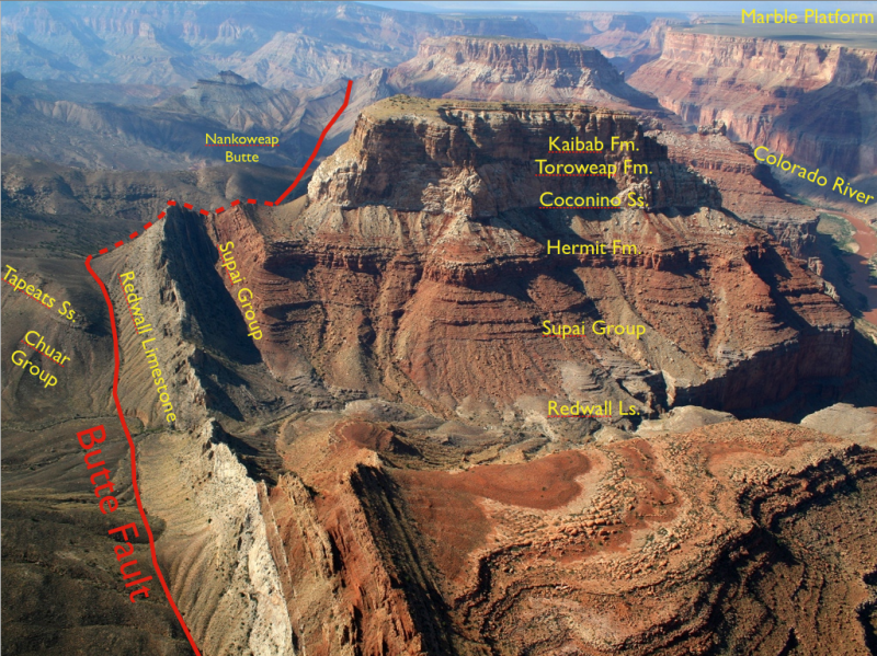 fault, Laramide Orogeny, The Butte Fault in Grand Canyon
