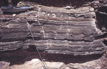 lacustrine, fine-grained, Bisbee Group