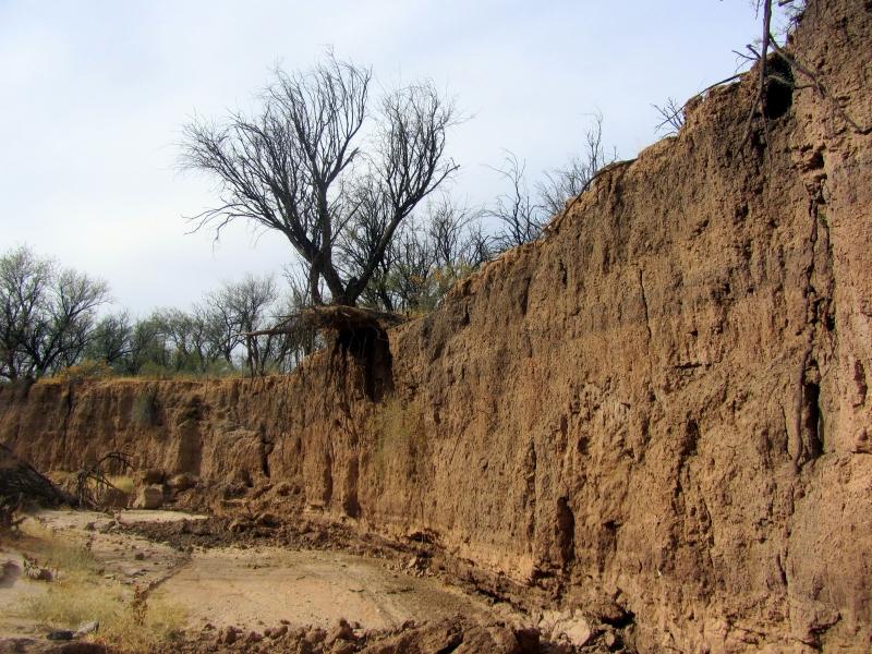 erosion, undercut bank
