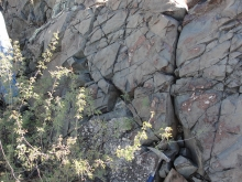 Pirate fault, Oro Valley, basaltic dike, igneous, faulting
