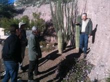 Basin and Range Province, core complex, Tucson Basin